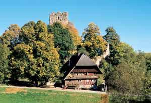 Waldau Sommer