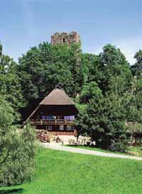 Bild eines Schwarzwaldhofs in Buchenberg