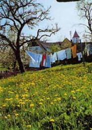 Bild des Ortsteils Weiler