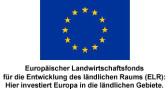 LOGO-EuropamitUntertitel